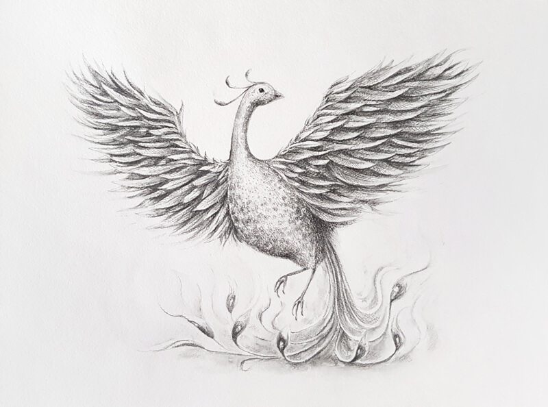 Drawing of a Phoenix with water-soluble graphite
