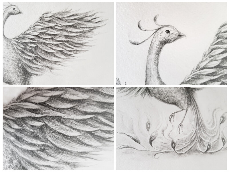 Close ups of a drawing with water-soluble graphite