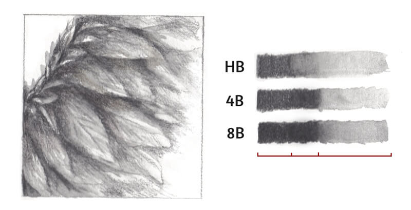 Water-soluble graphite samples