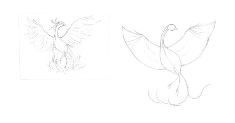 Sketches of a phoenix