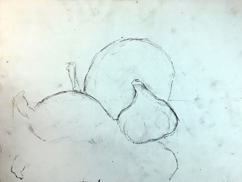 Drawing the subjects of the still life with a pencil