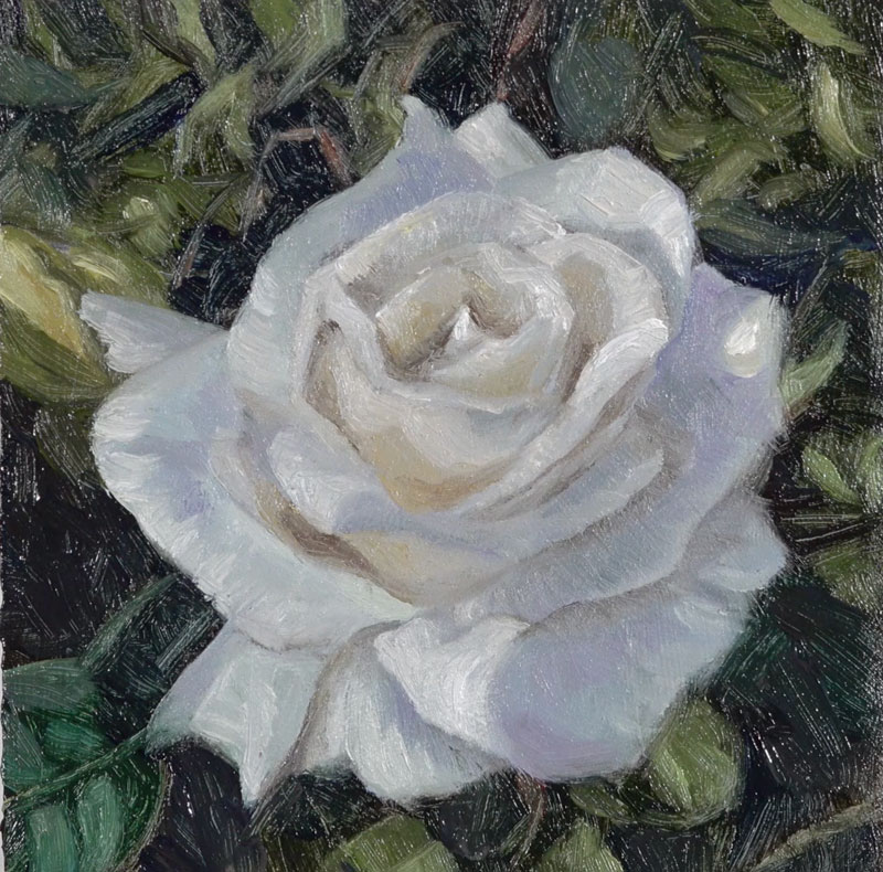 Adding the final highlights to the painting of a rose