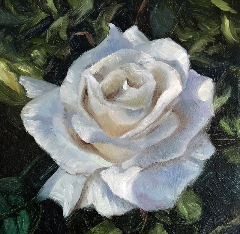 White Rose Oil Painting