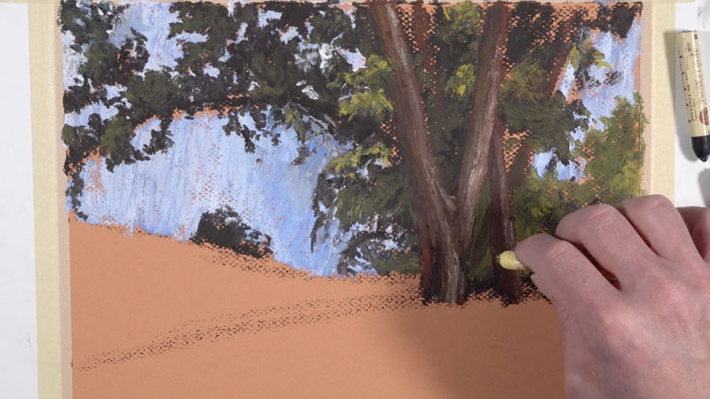Adding texture to the trunk of the tree