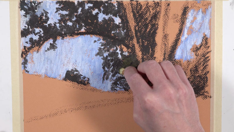 Drawing the shape of the tree