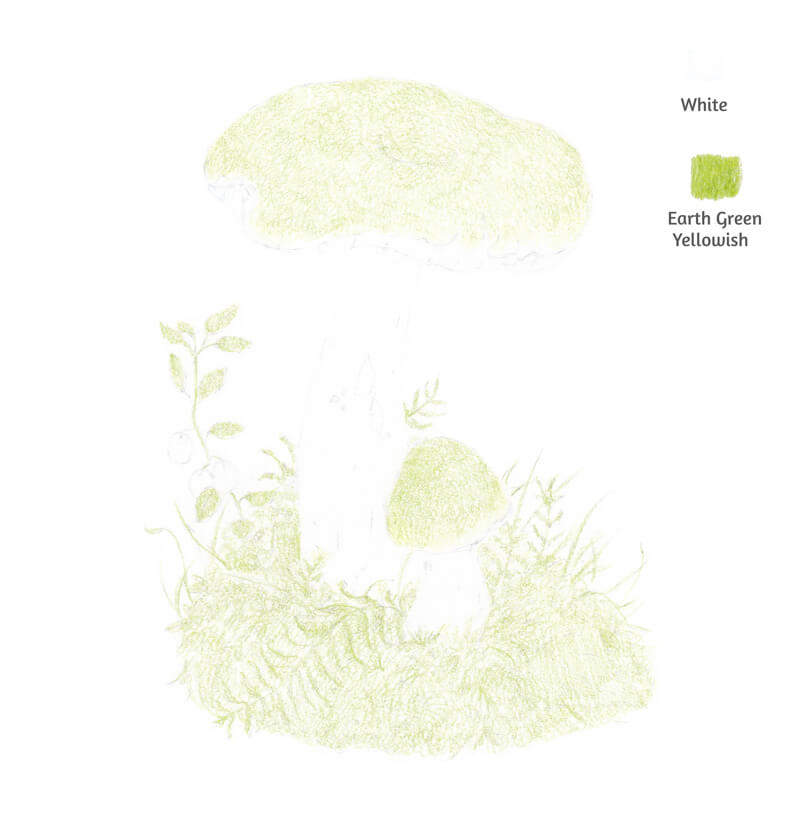 Light green colored pencil applications on the mushroom