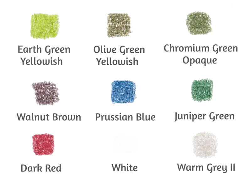 Colored pencil swatches and colors for drawing a mushroom