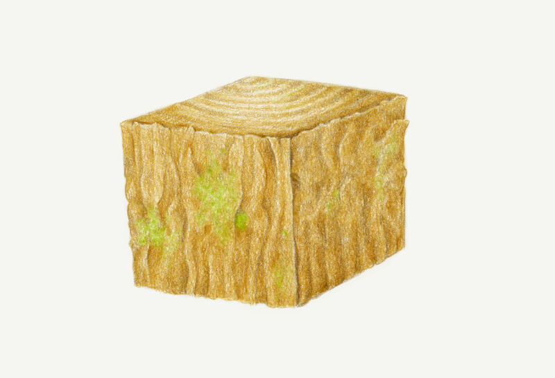 Drawing realistic texture of wood grain