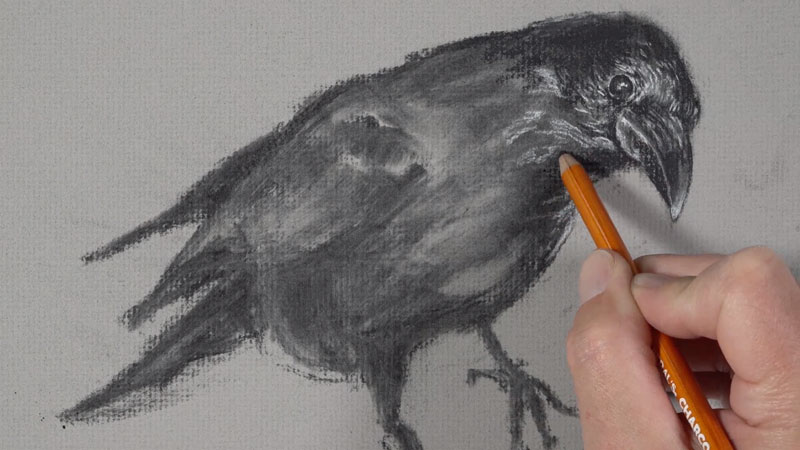 Darkening areas with the compressed charcoal pencil