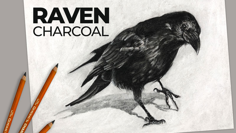 How to Draw a Raven with Charcoal