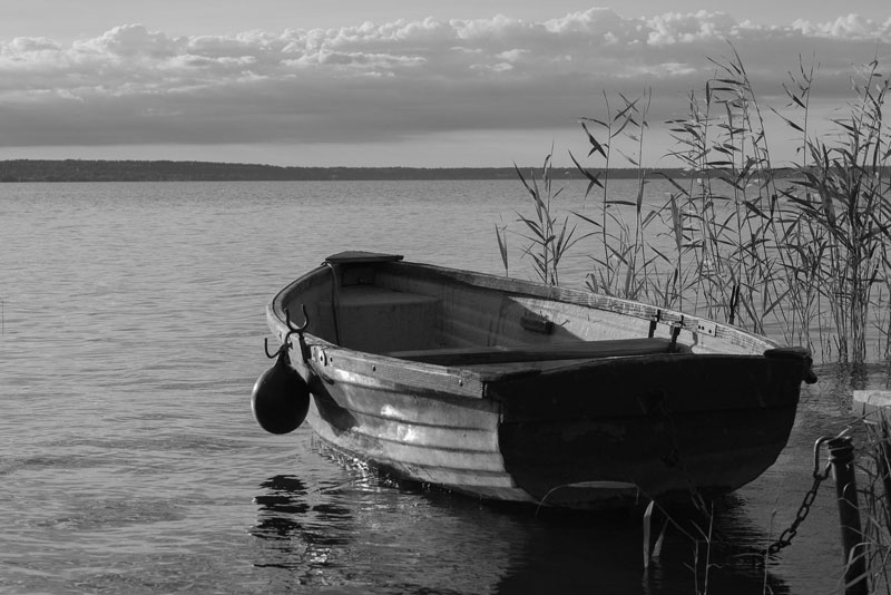 Row Boat Photo Reference