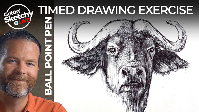 Ball Point Pen Drawing - Cape Buffalo