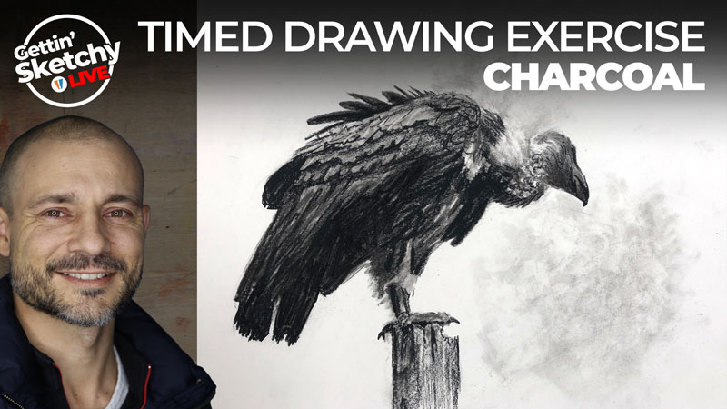 Drawing a Vulture with Charcoal