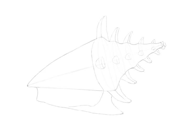 Pencil drawing of seashell