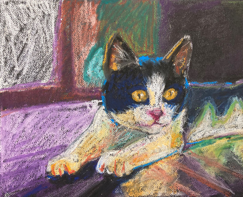 Cat drawing with oil pastels