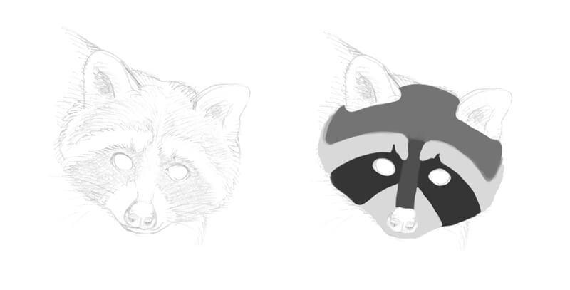 Mapping the values on the face of the raccoon