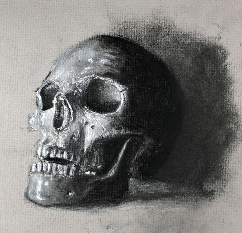 Charcoal Drawing of a Skull on Gray Paper