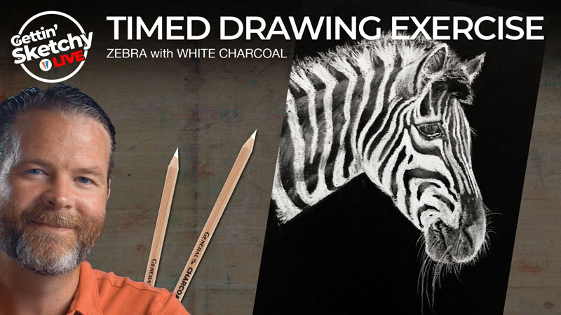 How to draw a zebra with white charcoal