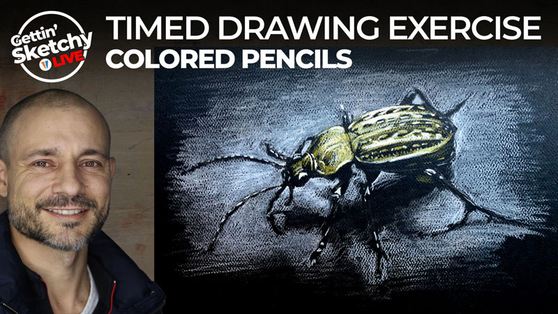 Limit your palette - draw a bug with colored pencils on black paper