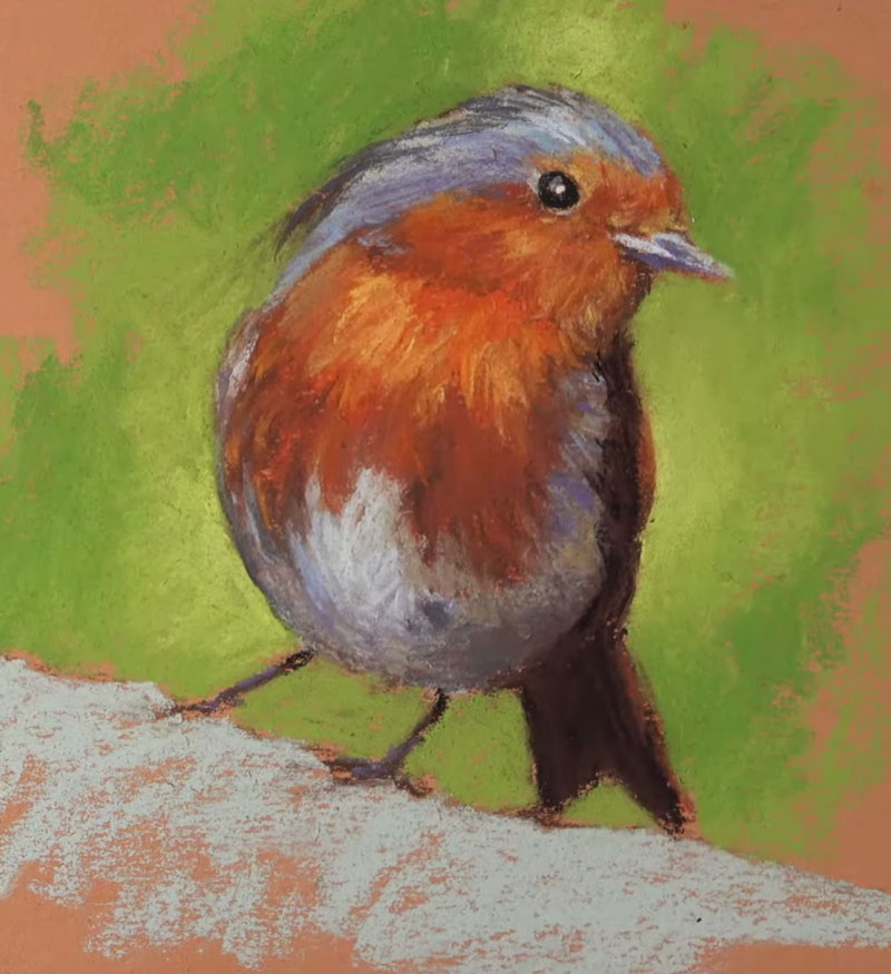 Developing values and details on the body of the Robin with pastels