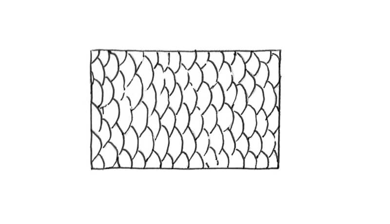 Sketch of fish scales