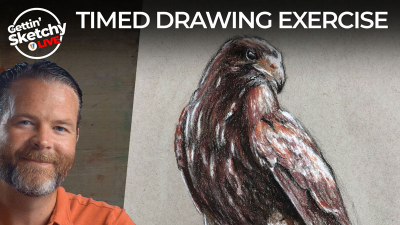 How to Draw a Hawk with Sepia Tones and Charcoal