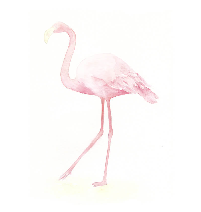 Painting the flamingo with watercolor