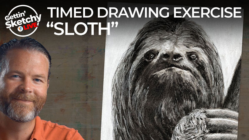 How to Draw a Sloth - Timed Drawing Exercise
