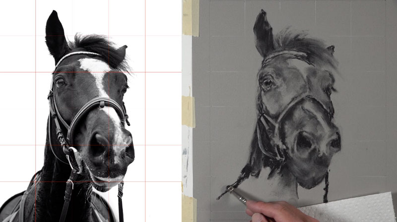 Drawing the body of the horse with charcoal