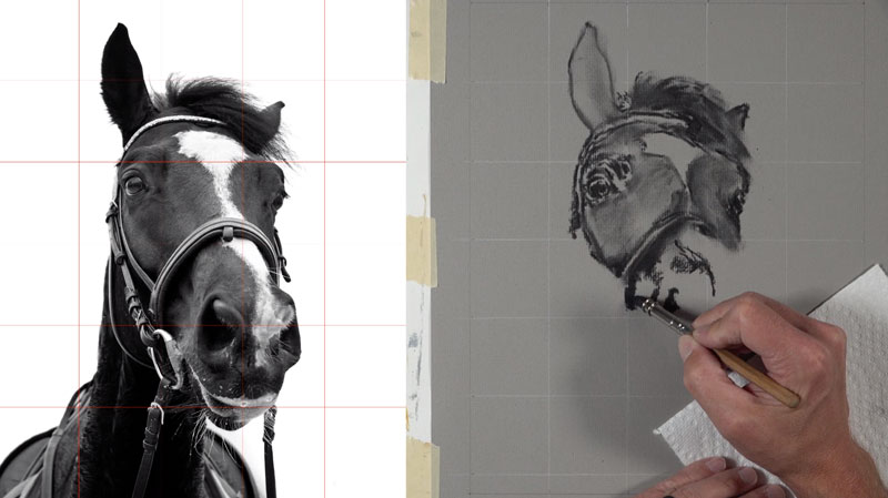 Drawing the values and contours of the horse