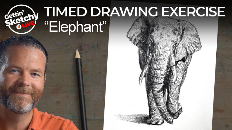 Pencil drawing of an elephant lesson
