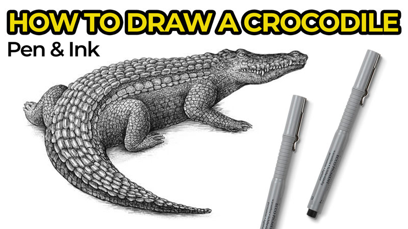 How to Draw a Crocodile with Pen and Ink