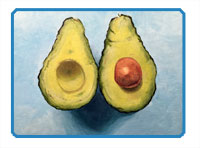 Acrylic painting lesson - Avocados