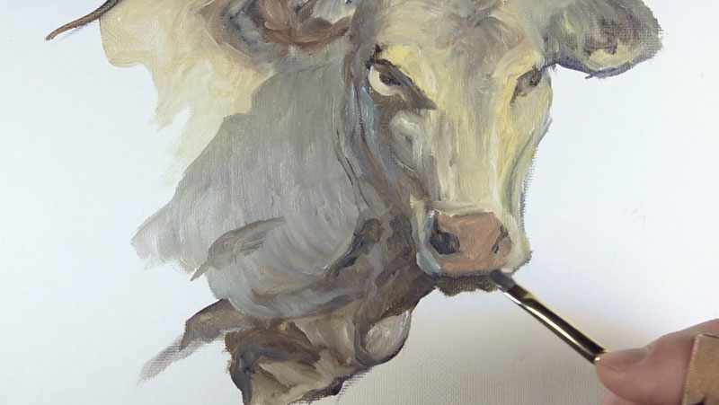 Painting the snout of the cow
