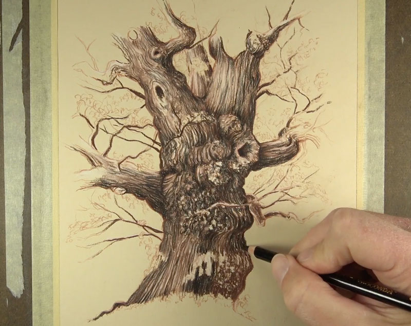 Adding shadows to a tree