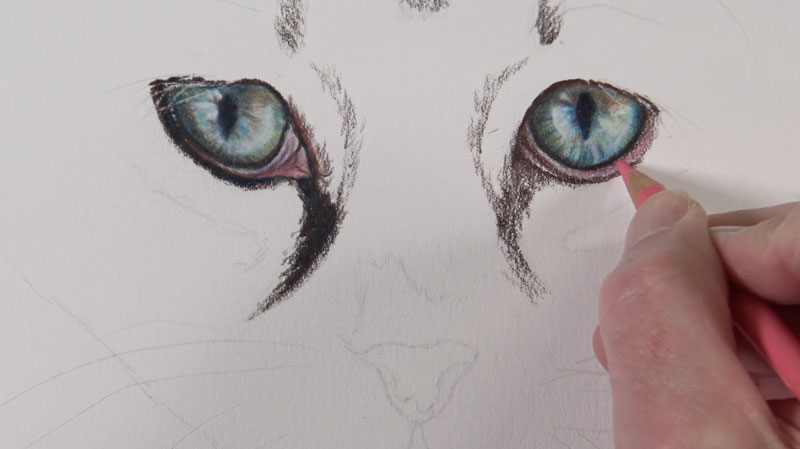 Drawing the areas around the eyes