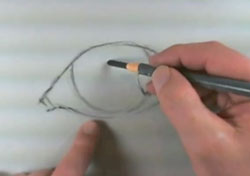 How to draw an eye with charcoal step 1 - define the shape