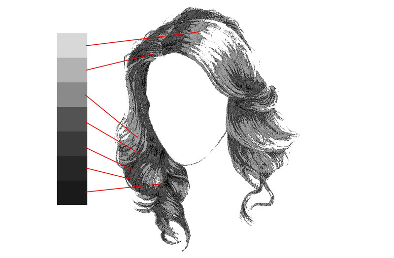 Drawing the form of the hair