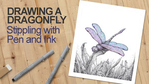 How to draw a Dragonfly with stippling ink lesson