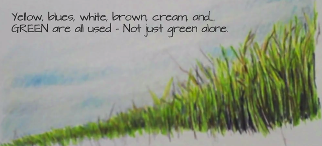 Draw grass with many colors not just green