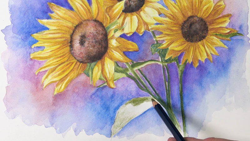 Finishing the stems and leaves with watercolor pencils
