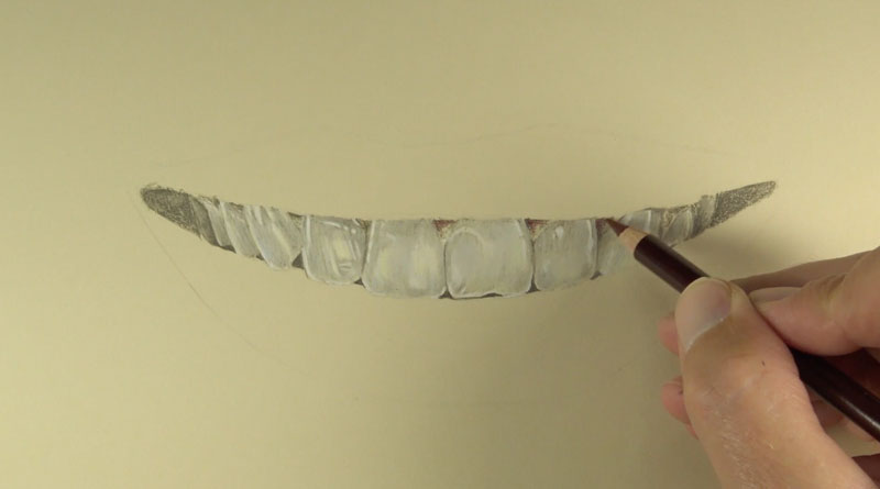 Drawing the teeth with colored pencils