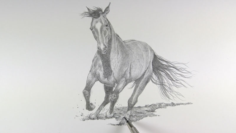 Drawing the cast shadow underneath the horse