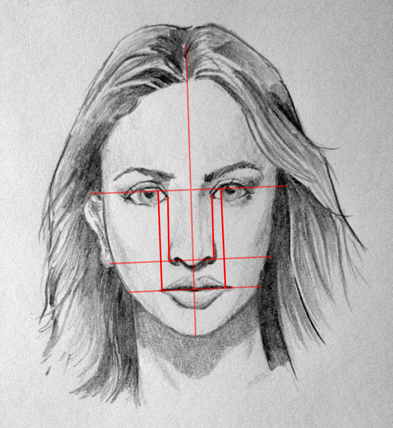 How to draw a face facial proportions facial proporitons fandeluxe Image collections