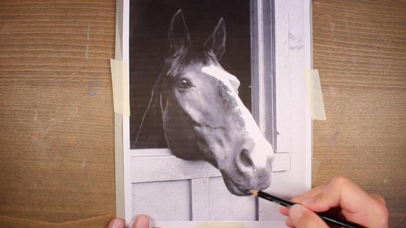Desenhe uma transferência de cavalo