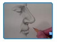 Nose - profile