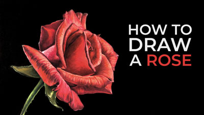 How to Draw a Rose - Pastels
