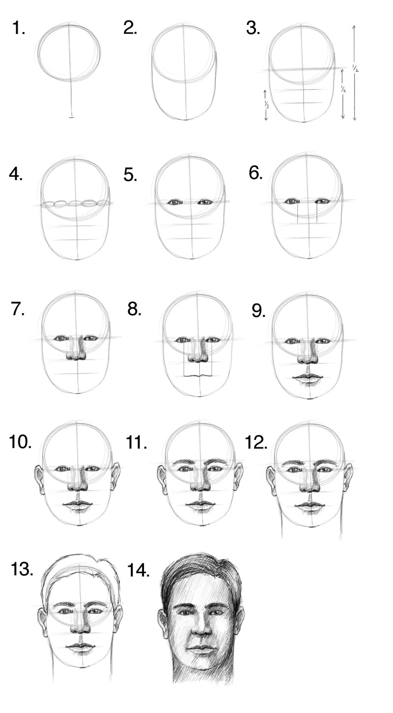 How to draw a face facial proportions how to draw a face step by step ccuart