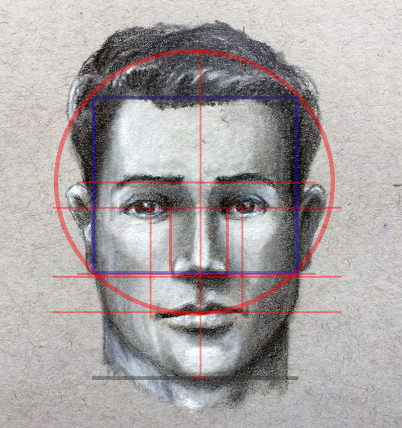 Line Drawing Of Human Face : How to draw a face facial proportions