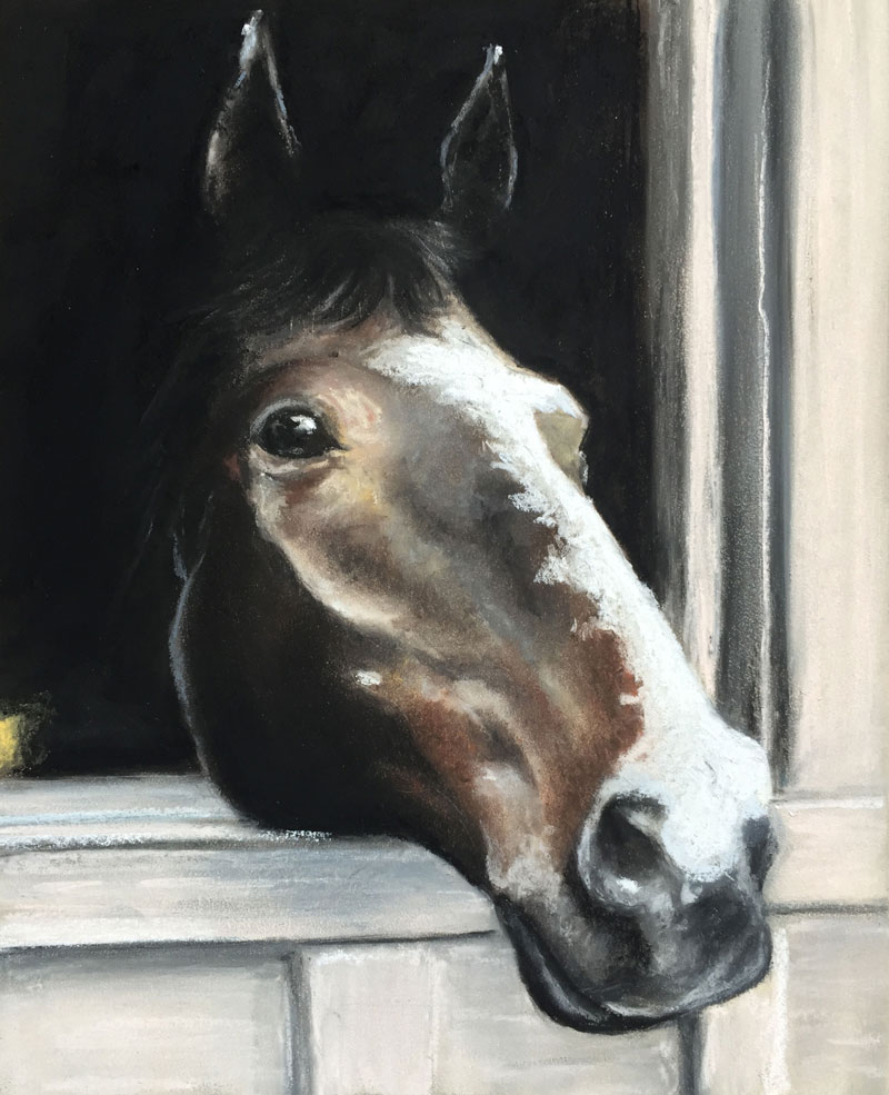 Pastel drawing of a horse